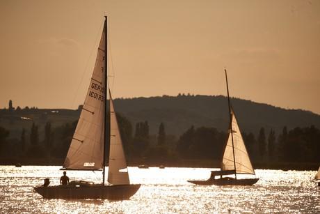 Seegelboote auf dem Bodensee