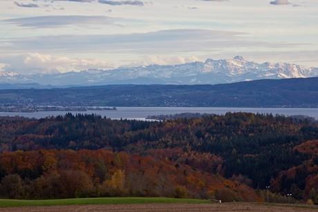 Alpensicht von der Homburg