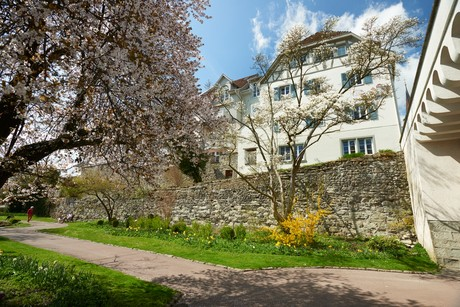 Stadtgarten im Frühling