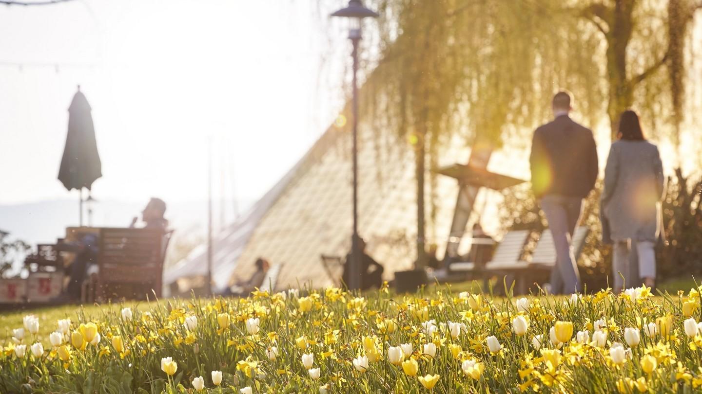 Frühling an der Seebar am Konzertsegel