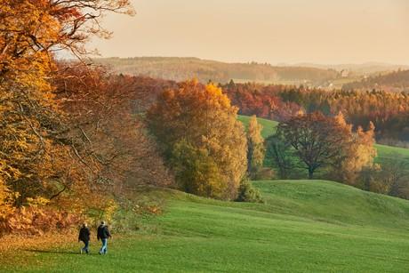 Herbstspaziergang auf dem Bodanrück
