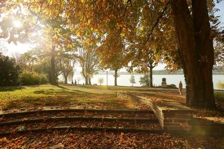 Herbst auf der Mettnau