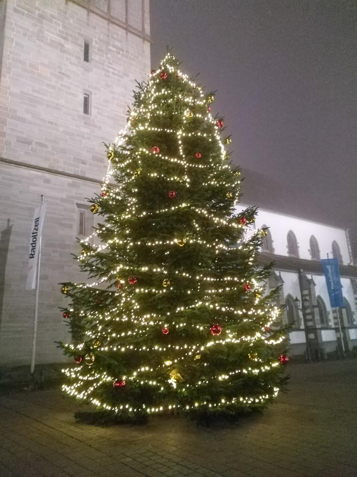 Weihnachtsbaum auf dem Radolfzeller Marktplatz_PR