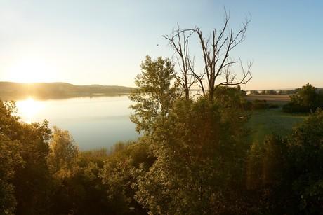 Naturschutzgebiet Mettnau bei Sonnenaufgang
