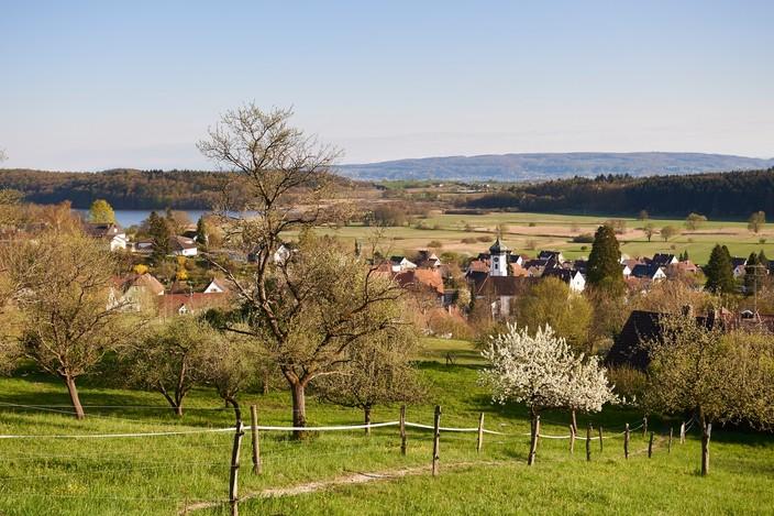Blick vom Streuobst-Sortengarten auf Möggingen mit Mindelsee