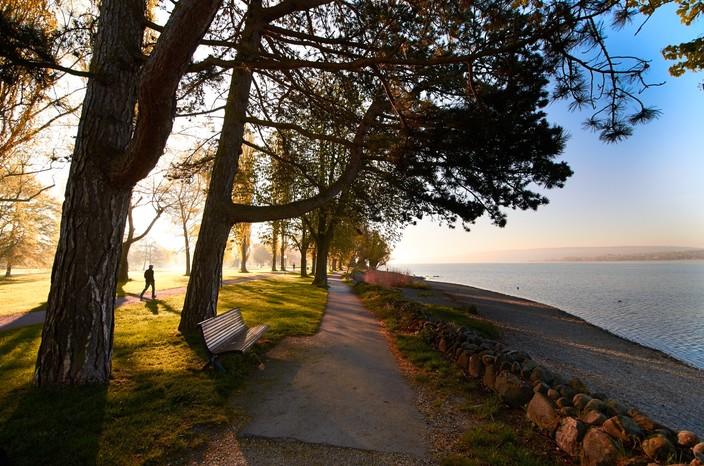 Uferweg im Mettnau-Park