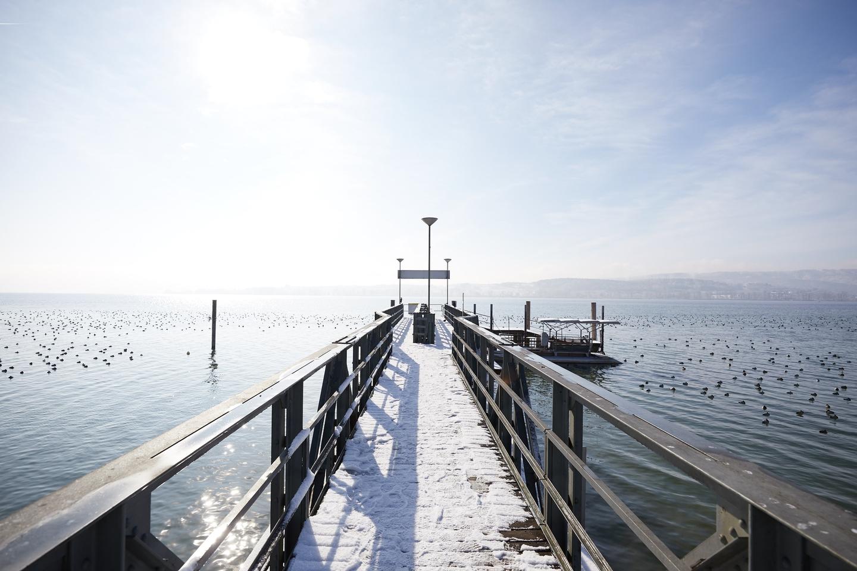 winterlicher Mettnau-Steg