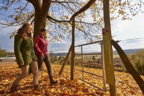 Herbst im Streuobstsortengarten