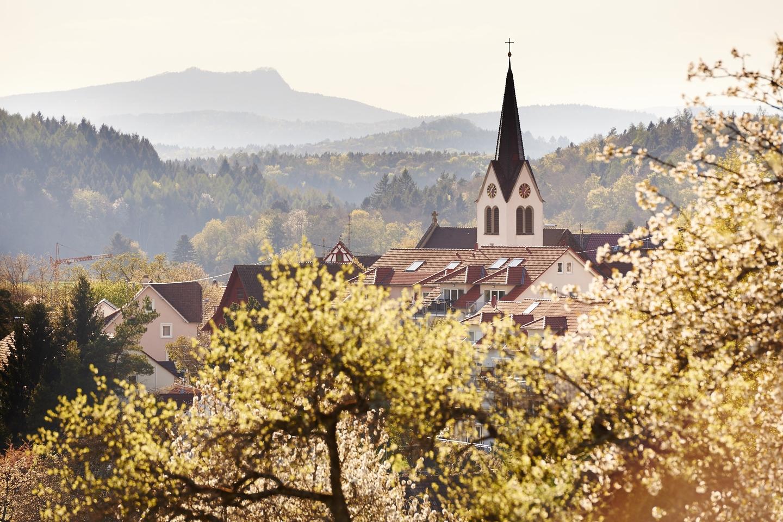 Blick auf Güttingen mit Steuobstblüte